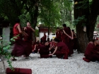 "Tibet, Lhasa, Sera Monastery: Monk at their public ritual ""violent"" afternoon discussion at the Depating Courtyard"