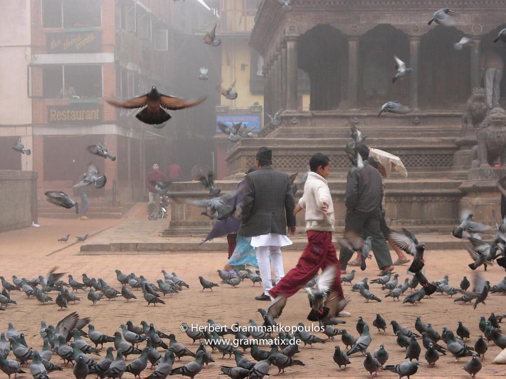 Nepal, Central Region, Bagmati Zone, Lalitpur, Patan, Durbar Square: Early wintermorning in front Krishna   Temple