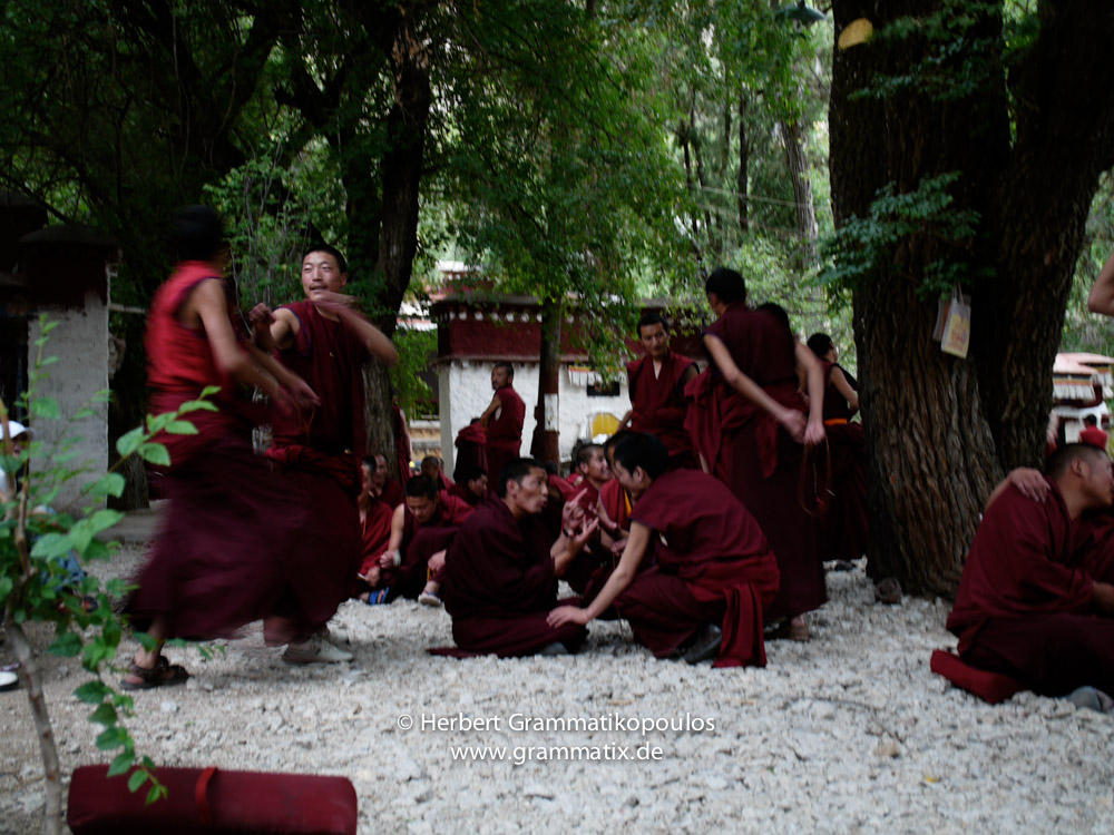 """Tibet, Lhasa, Sera Monastery: Monk at their public ritual """"violent"""" afternoon discussion at the Depating Courtyard"""