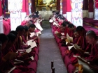 Tibet, Lhasa, Drepung Monastery: Monks studying in the Main Assembly Hall