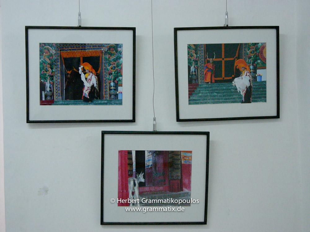 Nepal, Central Region, Bagmati Zone, Kathmandu, Bal Mandir, Khulla Dhoka Exhibition: Some of my works: at the upper row the inauguration ceremony of the Rigon Tashi Choeling monastery in Dallu/Pharping (L1100 479 and L1100480), center: Tibet, Zuangtse (Giantse) deer in the Zha Shen Lunbu monastery